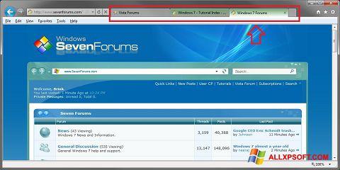 Zrzut ekranu Internet Explorer na Windows XP