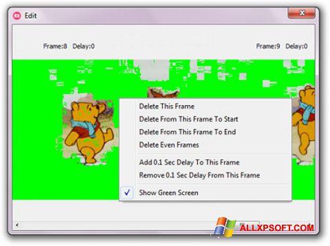 Zrzut ekranu GifCam na Windows XP