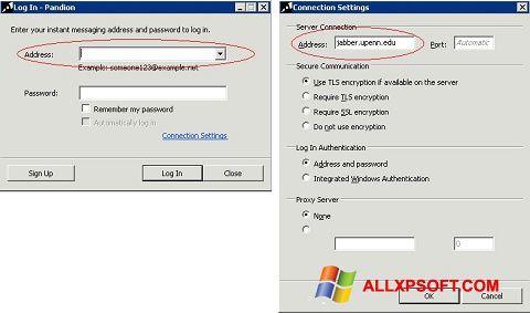 Zrzut ekranu Pandion na Windows XP